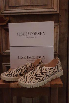 Ilse Jacobsen  Tulip139 ZEB